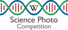 European Science Photo Competition - logo